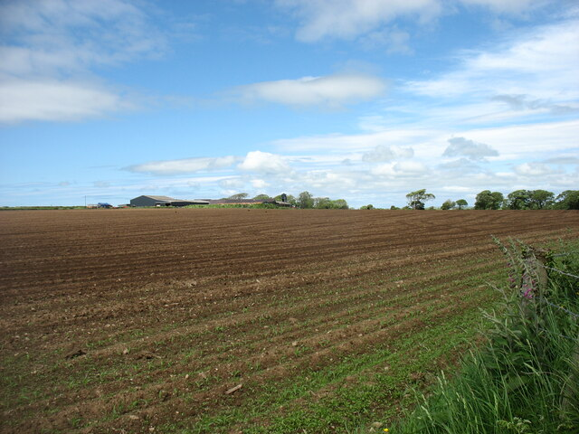 Field below Rhosbadrig Farm