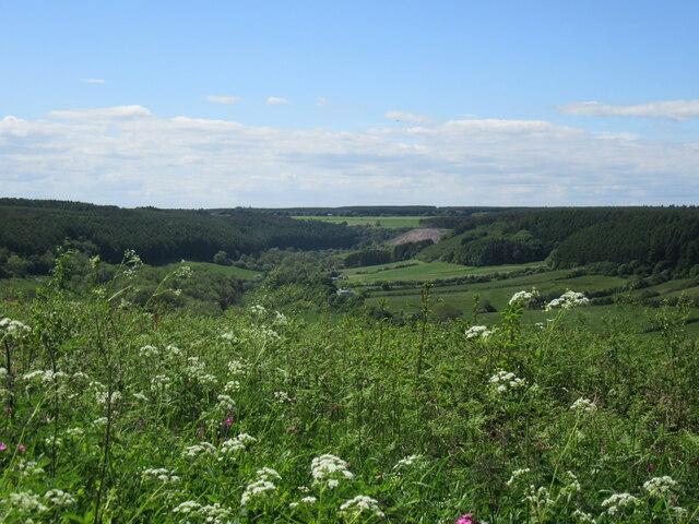 Troutsdale view
