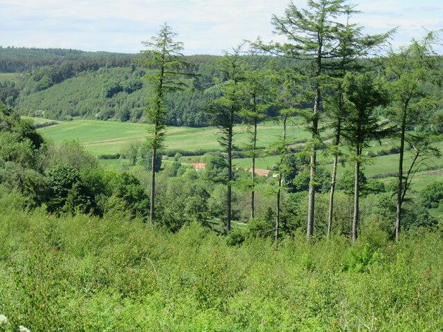 View into Troutsdale