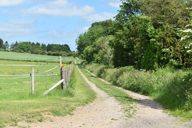 Farm track beside railway embankment