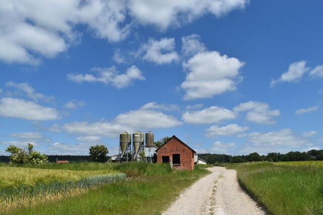 Summer sky over farm buildings