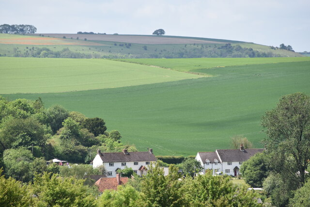 Downland above houses at Burcombe