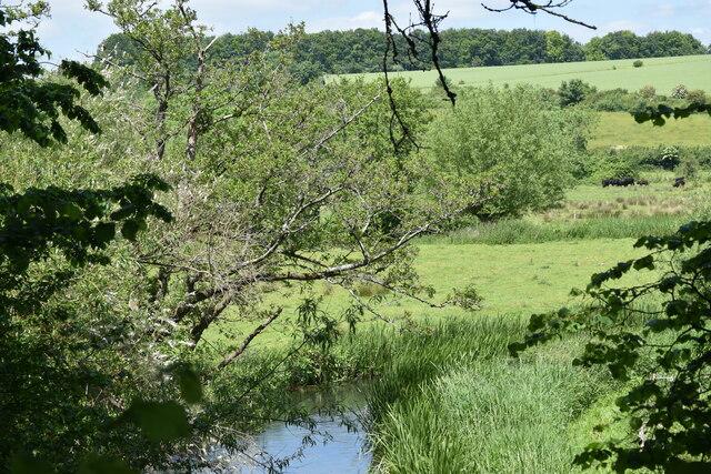 River Nadder at Burcombe