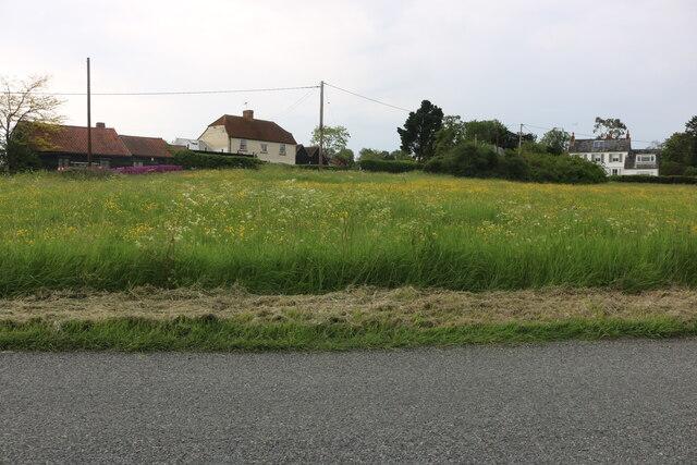 Large green in Peldon