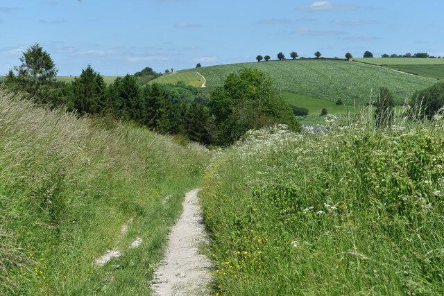 Path south of Great Wishford