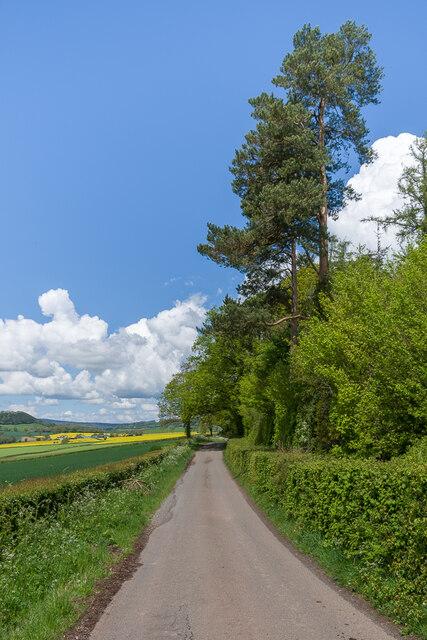 Lane near Cockyard