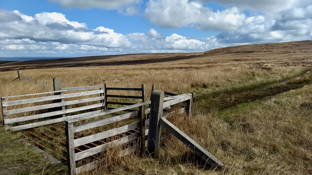 Cattle grid and gate, Ivrigar