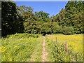 TF0820 : Sunny footpath scene by Bob Harvey