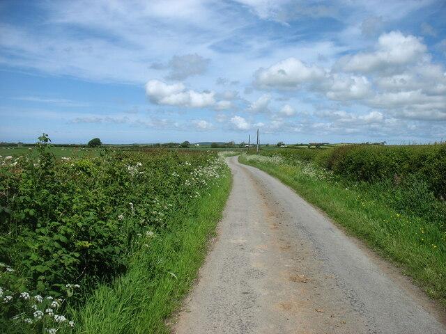 The lane towards Dothan