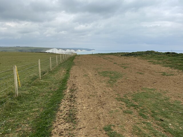 Worn vegetation, Seaford Head