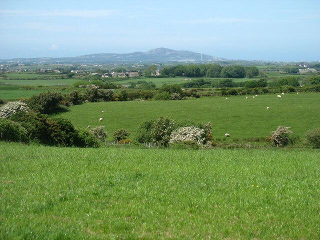 Farmland south of Gwalchmai