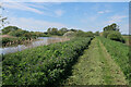 TL6897 : River Wissey by Hugh Venables
