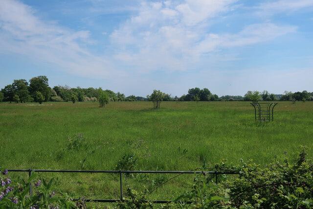 Parkland near Wretton Fen House