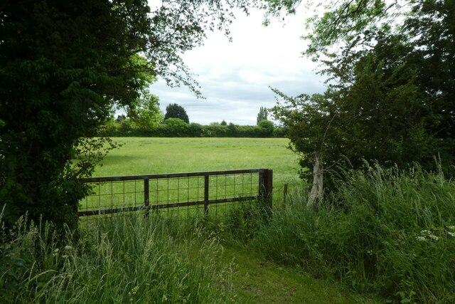 Field beside Fenton Lane