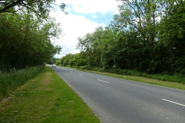 Fenton Lane