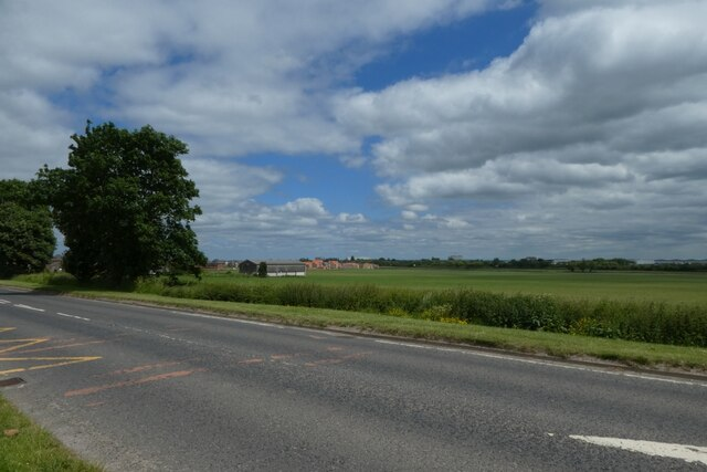Across Milford Road