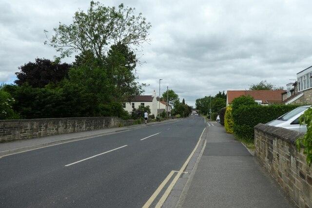Along Milford Road