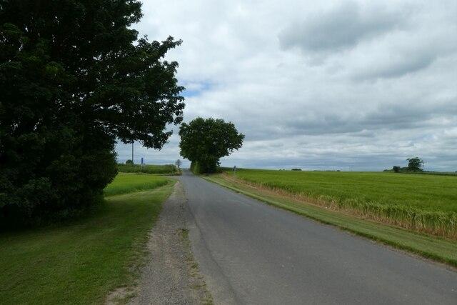 Along Westfield Lane