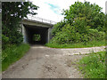 SO8853 : Track under the M5 at Whittington by Chris Allen