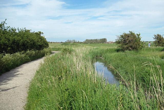 Marsh Lane meets South Wall