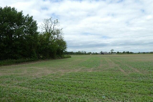 Farmland east of Hillam