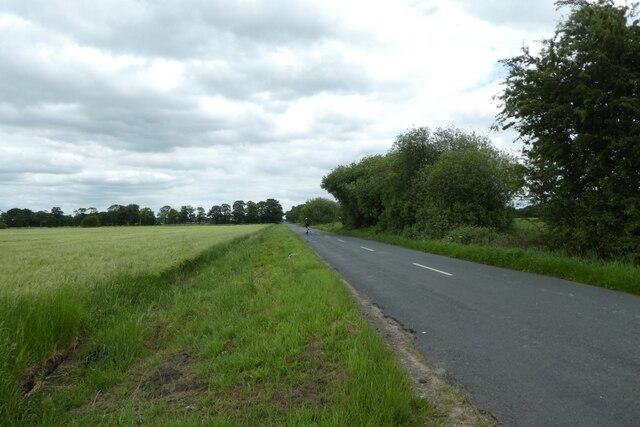 Cyclist on Hillam Common Lane