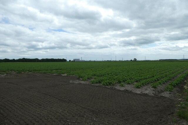 Fields on Maspin Moor