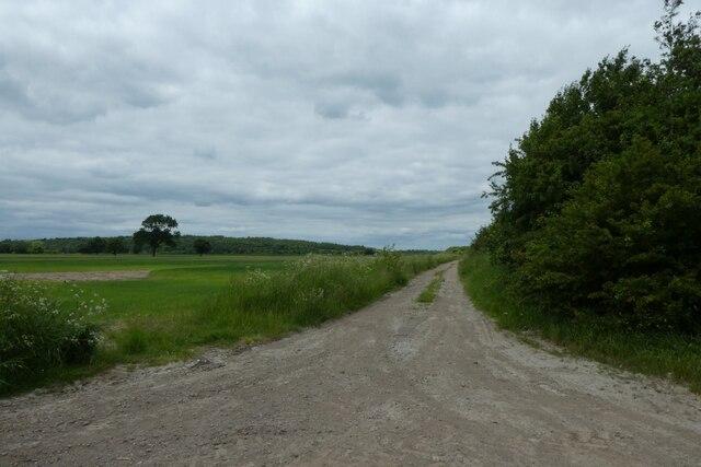 Track of Common Lane