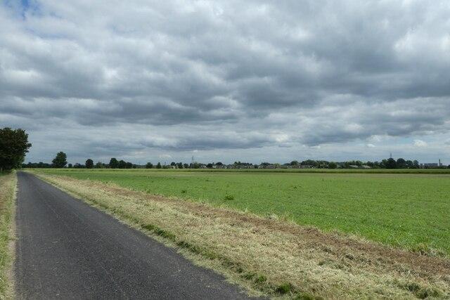 Farmland and Common Lane