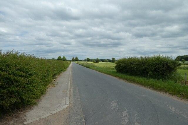 Along Mill Lane