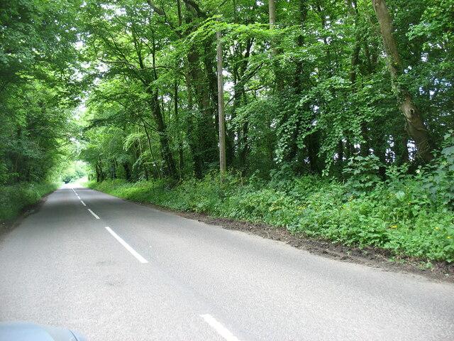 The road to Beaumaris