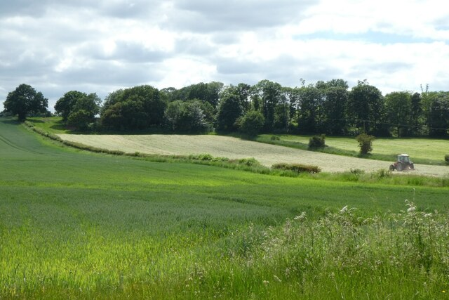 Fields north of Hambleton Hough