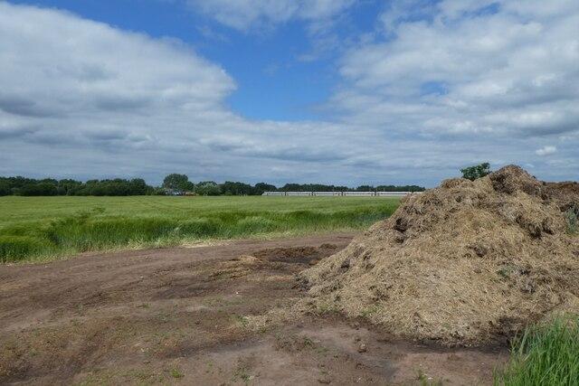 Muck heap beside Field Lane