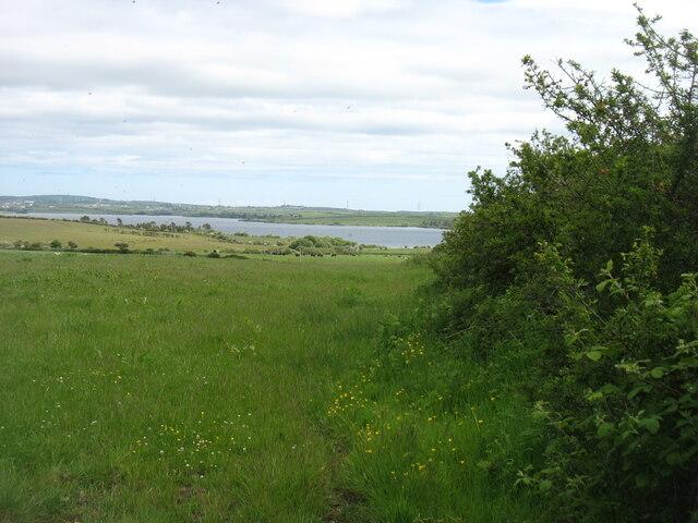 The Llyn Alaw Reservoir