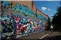 TA1030 : Street art beside the Trans Pennine Trail by David Lally