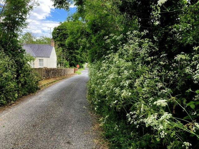 Camowen Road, Donaghanie