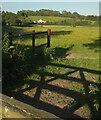 SX8466 : Towards Holman Hill by Derek Harper