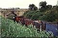 NZ2057 : Tanfield Railway - demonstration goods train by Chris Allen
