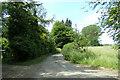 TL8838 : Applecroft Farm Road, Great Henny by Geographer