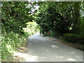 TL8838 : Henny Road, Great Henny by Geographer