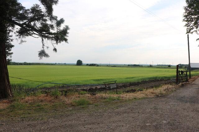 Fields by Ferry Hill Farm