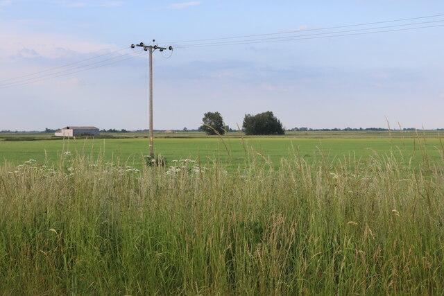 Field by Chatteris Road