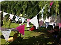 SP3165 : Home-made bunting hanging from the trees, Leamington Peace Festival by Alan Paxton