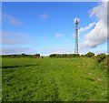 SW7717 : Communications mast on the path between Coverack and Trewillis by habiloid