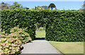 NX0942 : Logan Botanic Garden by Billy McCrorie
