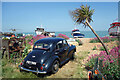 TR3752 : Old Morris under a Small Palm Tree by Des Blenkinsopp