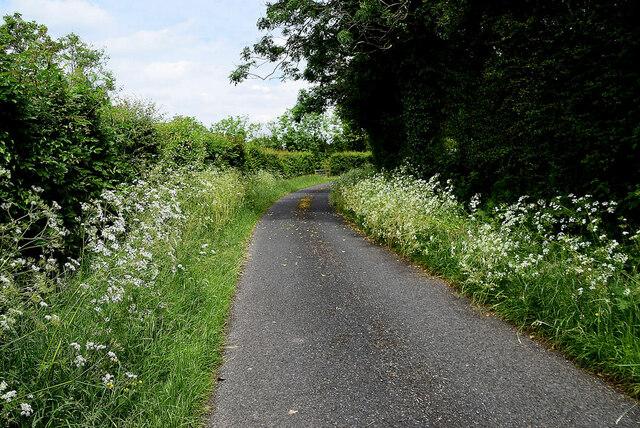 Bend along Marlhill Road