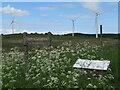 NS9065 : Netherton Woodland by M J Richardson