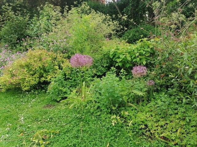 Flower bed in Northway Gardens, Hampstead Garden Suburb