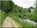 SE1115 : Canal towpath at Milnsbridge, Huddersfield by Malc McDonald